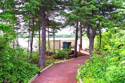 Corduroy Brook Trail near Grand Falls-Windsor