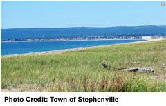 Stephenville shoreline view