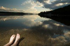 Terra Nova National Park shoreline